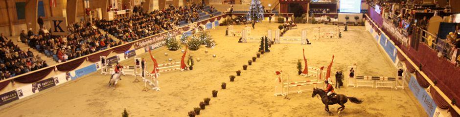 HorseApp KNOCK OUT- Christmas show finale d. 10 dec